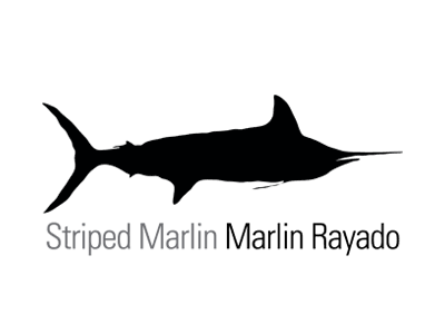 Striped Marlin Fishing La Paz