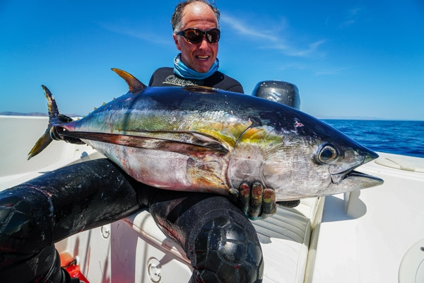 Spearfishing Tuna