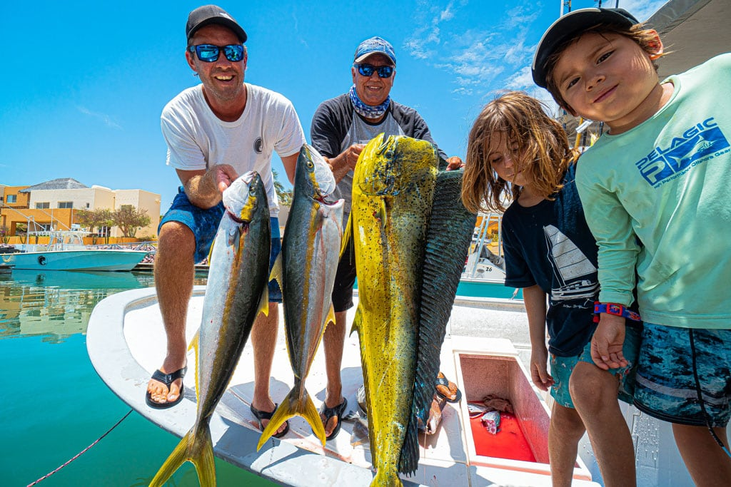 Yellowtail, Mahi, Fishing