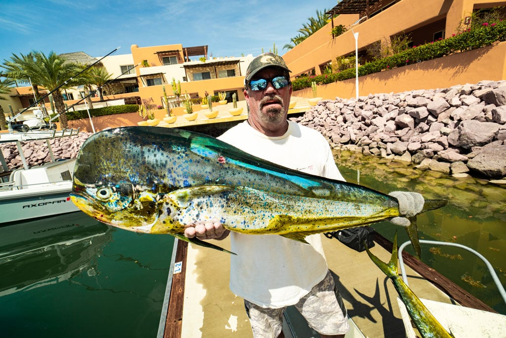 Great Mahi Mahi fishing at La Paz